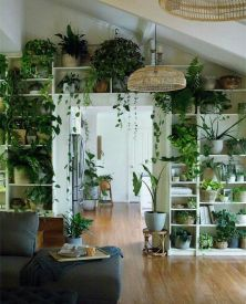 Plant interior styling